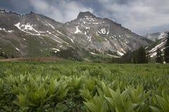Montanha nevado Imagem de Stock Royalty Free