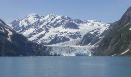 Montanha no fiorde de Kenai Fotos de Stock Royalty Free