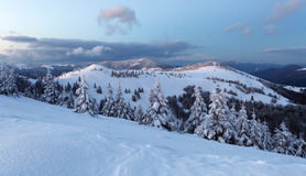 Montanha no inverno, Eslováquia da floresta Fotografia de Stock