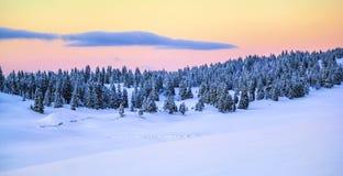 Montanha no inverno, Switzerland de Jura Fotos de Stock Royalty Free