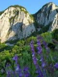 montanha no nascer do sol Imagens de Stock
