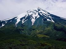 Montanha Nova Zelândia de Taranaki Imagens de Stock Royalty Free