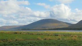 A montanha, o rio e os pastos verdes no dia ensolarado, os carneiros brancos estão pastando em uma distância vídeos de arquivo