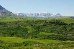 Montanha, prado e floresta Imagem de Stock