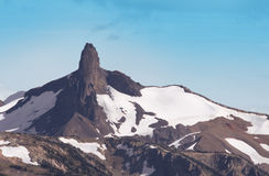 Montanha preta da presa no parque de Garibaldi, assobiador, B Fotos de Stock Royalty Free