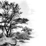 Montanha preto e branco Imagens de Stock Royalty Free