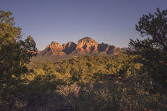 Montanha quadro árvore do trovão Foto de Stock Royalty Free