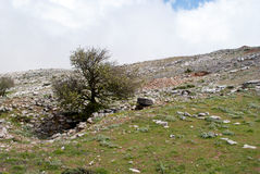 Montanha rochosa Ataviros Fotografia de Stock Royalty Free