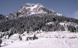 Montanha rochosa com neve e gelo fotos de stock