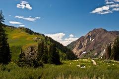 Montanha rochosa elevada Fotos de Stock Royalty Free