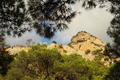 Montanha rochosa vista através das árvores de pinho Fotos de Stock