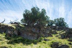 Montanha Rocky Hillside imagens de stock royalty free