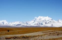 Montanha Shishapangma Fotografia de Stock