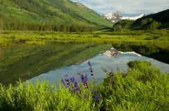 Montanha Snow-capped que reflete no lago. Foto de Stock