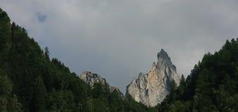 Montanha superior nas árvores Foto de Stock Royalty Free