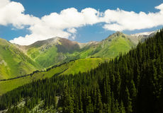 Montanha verde Foto de Stock Royalty Free