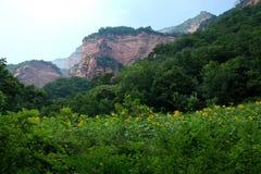 Montanha verde & vermelha Fotografia de Stock
