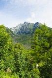 Montanha verde bonita fotos de stock royalty free