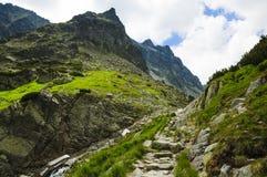 Montanha verde bonita imagem de stock royalty free