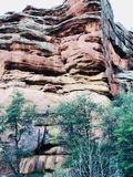 Montanha vermelha da rocha com árvores fotos de stock
