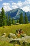 Montanhas Fotografia de Stock Royalty Free