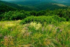Montanhas Imagens de Stock Royalty Free