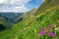 Montanhas alpinas do verão imagens de stock