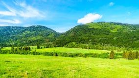 Montanhas ao longo da estrada da angra de Heffley-Louis BC em Canadá imagens de stock