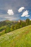 Montanhas austríacas Imagens de Stock