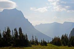 Montanhas azuis, pinhos verdes, e grama verde no parque nacional de geleira Fotografia de Stock Royalty Free