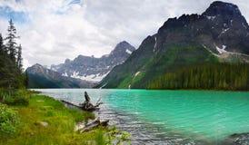 Montanhas Banff Alberta do lago rockies do canadense fotos de stock