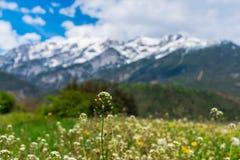 montanhas bonitas Foto de Stock Royalty Free