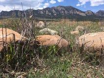 Montanhas cênicos de Boulder Colorado dos ferros de passar roupa fotos de stock royalty free