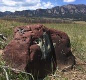 Montanhas cênicos de Boulder Colorado dos ferros de passar roupa imagem de stock royalty free