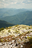 Montanhas Carpathian Imagem de Stock Royalty Free