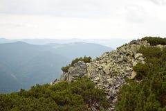 Montanhas Carpathian Fotos de Stock