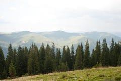Montanhas Carpathian Foto de Stock