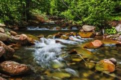Montanhas Carpathian Córrego da montanha e grama verde no banco Imagem de Stock Royalty Free