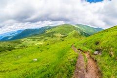 Montanhas Carpathian Fuga de montanha à montanha a mais alta de Ucrânia Hoverla Imagens de Stock
