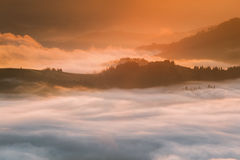 Montanhas Carpathian Montanhas cobertas na névoa no nascer do sol Fotografia de Stock Royalty Free