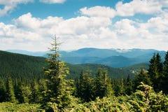 Montanhas Carpathian no verão Fotografia de Stock Royalty Free