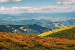 Montanhas Carpathian no verão Fotos de Stock