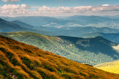 Montanhas Carpathian no verão Imagens de Stock