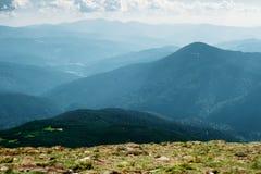 Montanhas Carpathian no verão Fotos de Stock Royalty Free