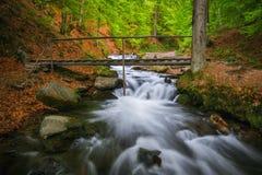 Montanhas Carpathian O rio da montanha perto da cachoeira Shipot Fotografia de Stock Royalty Free