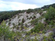 Montanhas Chipre de Troodos Paisagens da floresta e a beleza de rios da montanha em uma altura de 1400 m acima do n?vel do mar fotografia de stock