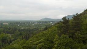 Montanhas cobertas com as árvores no tempo nebuloso video estoque