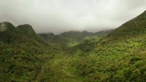 Montanhas cobertas com a floresta ?mida, Filipinas, Camiguin video estoque