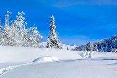Montanhas cobertos de neve em Montenegro Fotografia de Stock