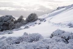 Montanhas cobertos de neve na trilha de Kepler Fotografia de Stock